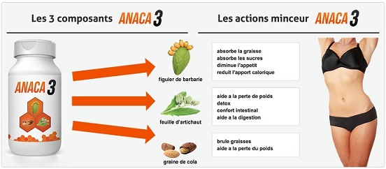exemples de menus avec anaca3