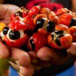 Quels sont les principales propriétés naturelles du guarana?