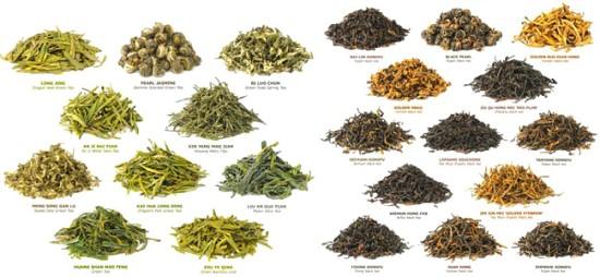types de thé vert brûleur de graisse