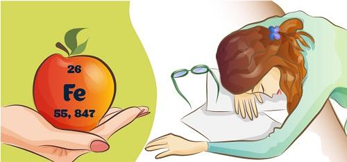 Complément alimentaire fer: lequel choisir pour éviter l'anémie?