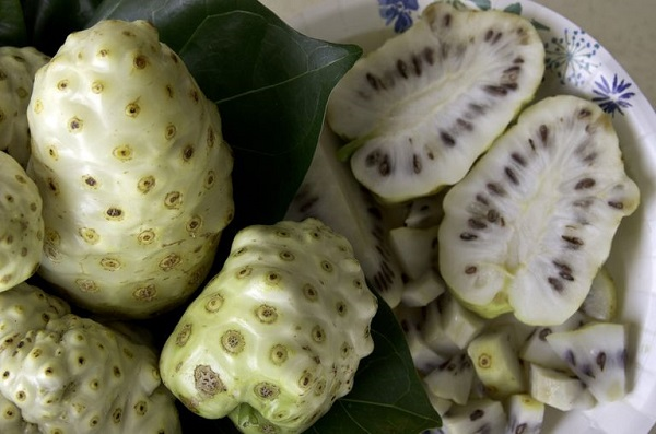 noni un fruit miracle